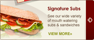Subs & Sandwiches | Menu